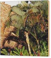 Palm Trees At Sunset Wood Print