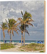 Palm Trees At The Beach Wood Print
