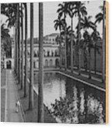 Palm Trees Bordering A Pool Wood Print