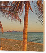 Palm Trees By A Restaurant On The Beach In Bahia Kino-sonora-mexico Wood Print