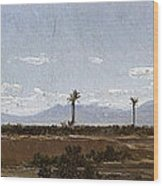 Palm Trees In Elche Wood Print