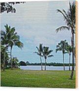 Palm Trees In Oahu Wood Print