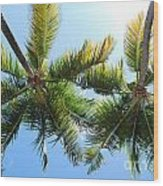 Palm Trees In Puerto Rico Wood Print