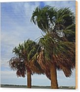 Palm Trees In The Wind Wood Print