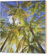 Palm Trees Of Aruba Wood Print