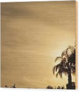 Palm Trees Sunset Over At Sea Of Galilee Wood Print