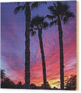 Palm Trees Sunset Wood Print