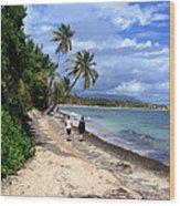 Palmas Del Mar Wood Print