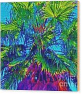 Palmetto Number 3 Wood Print