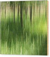 Palmetto Spring Wood Print