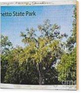 Palmetto State Park Wood Print