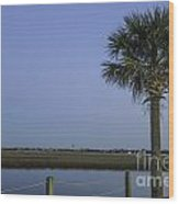 Palmetto View Of Lighthouse Wood Print