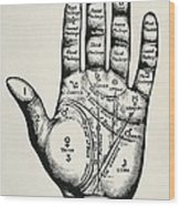 Palmistry. Planetary And Zodiacal Wood Print