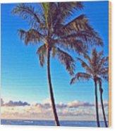 Palms 438 Wood Print