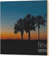 Palms At Clear Dawn Wood Print