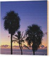 Palms At Sunrise Wood Print