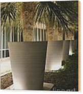 Palms In Pots Wood Print
