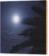 Palms Of The Night Wood Print