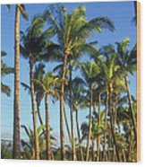 Palms On Hawaii Beach Trail Wood Print
