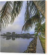 Palms Over The Waterway Wood Print