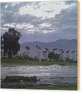 Palms Springs Flood Wood Print