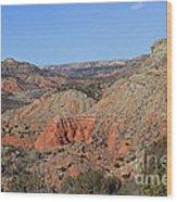 Palo Duro Canyon 021013.282 Wood Print