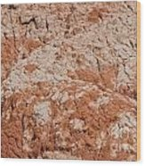 Palo Duro Canyon 040713.42 Wood Print