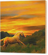 Palomino Pal At Sundown Wood Print