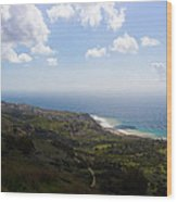 Palos Verdes Peninsula Wood Print by Heidi Smith