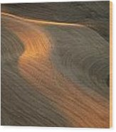 Palouse Contours II Wood Print by Latah Trail Foundation