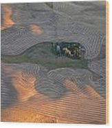 Palouse Contours IIi Wood Print by Latah Trail Foundation