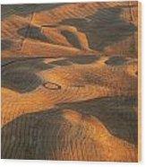 Palouse Contours V Wood Print