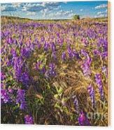 Palouse Falls Wildflowers Wood Print