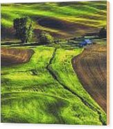 Palouse Glow Wood Print