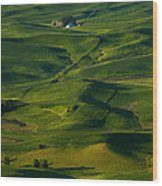 Palouse Green Wood Print