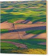 Palouse Ocean Of Wheat Wood Print