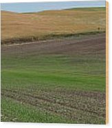 Palouse Patchwork 3 Wood Print