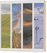 Palouse Seasons II Wood Print by Doug Davidson