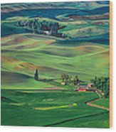 Palouse - Washington - Farms - 4 Wood Print