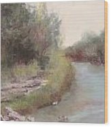 Paluxy River Afternoon Wood Print