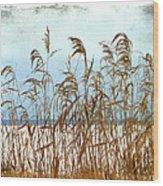 Pampas Grass Wood Print by Dianne  Lacourciere