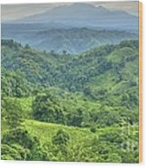 Panama Landscape Wood Print