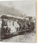 Panama Roosevelt, 1906 Wood Print