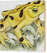 Panamanian Golden Frog Wood Print
