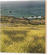 Panarama Spring On Califronia Coast By Denise Dube Wood Print