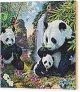 Panda Valley Wood Print