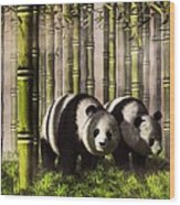 Pandas In A Bamboo Forest Wood Print