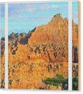 Panels Of A Canyon Wood Print