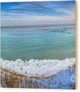 Panning Lake Michigan Wood Print