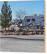 Panorama Cedar Cove Rv Park Street 2 Wood Print